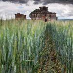 tuscan_storm_-_low_res.jpg